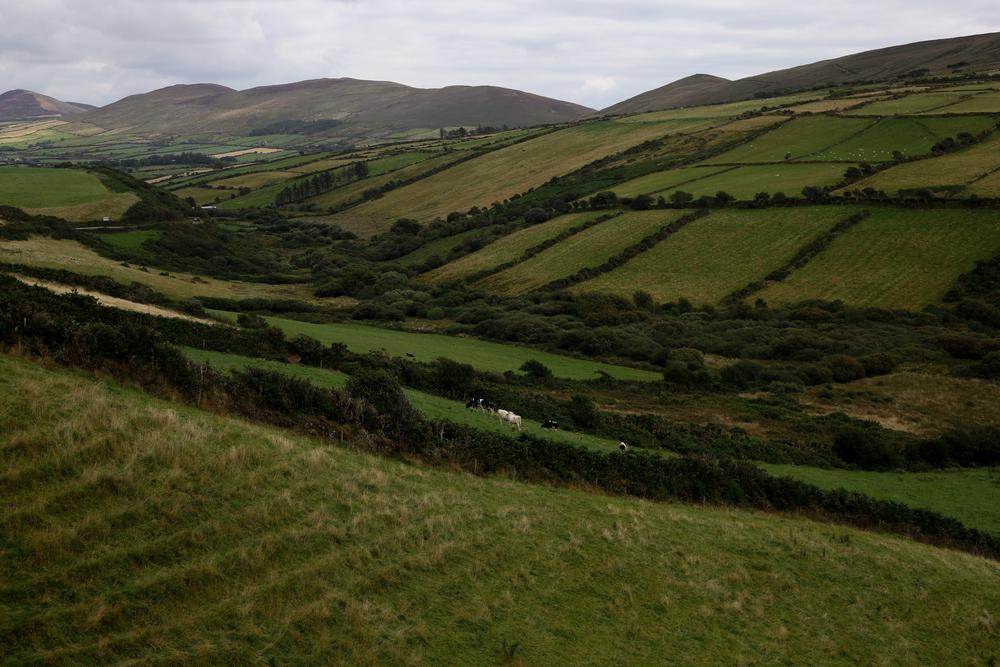 Ireland-8627-2.jpg