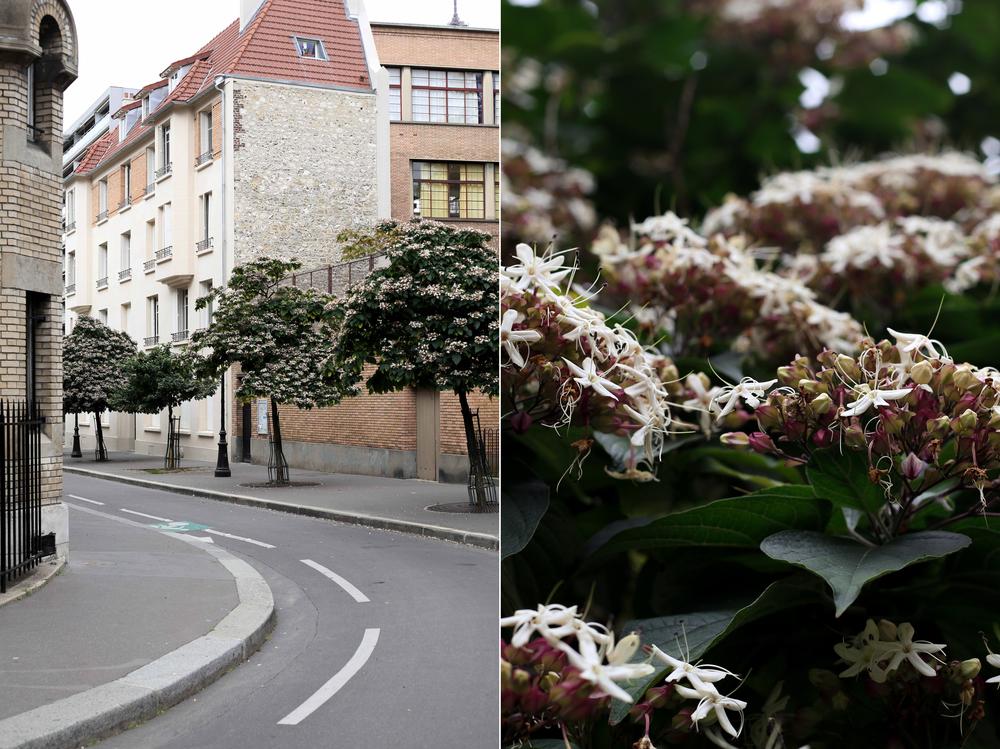 Paris-france-2-79_.jpg