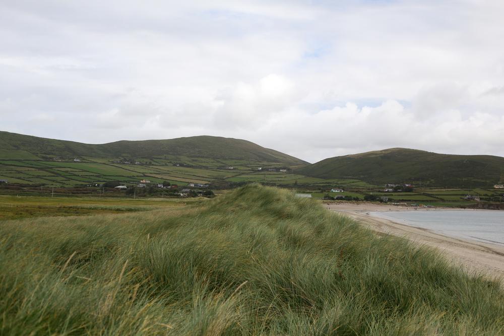 Ireland-8952-2.jpg