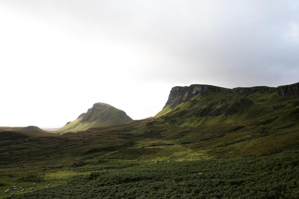 Scotland-0833.jpg