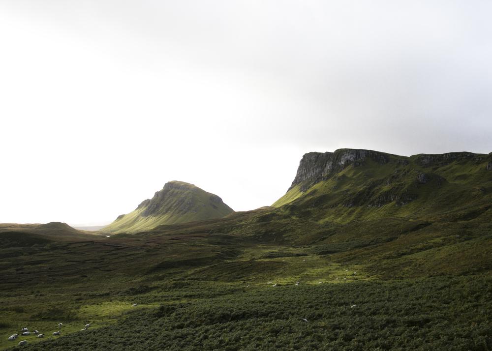 Scotland-0833_1.jpg