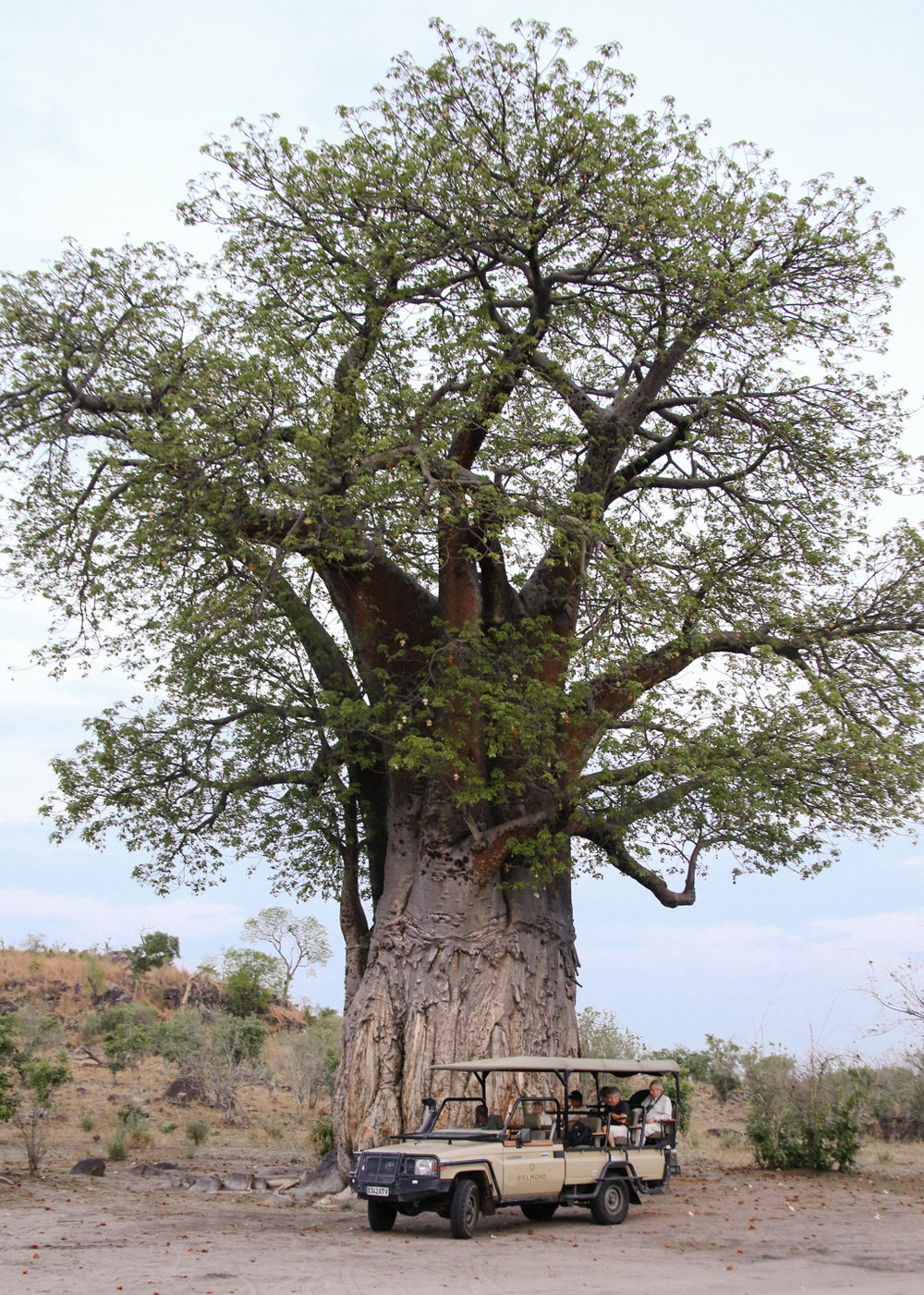 Africa - LindsayBrown -WEB-4011.jpg