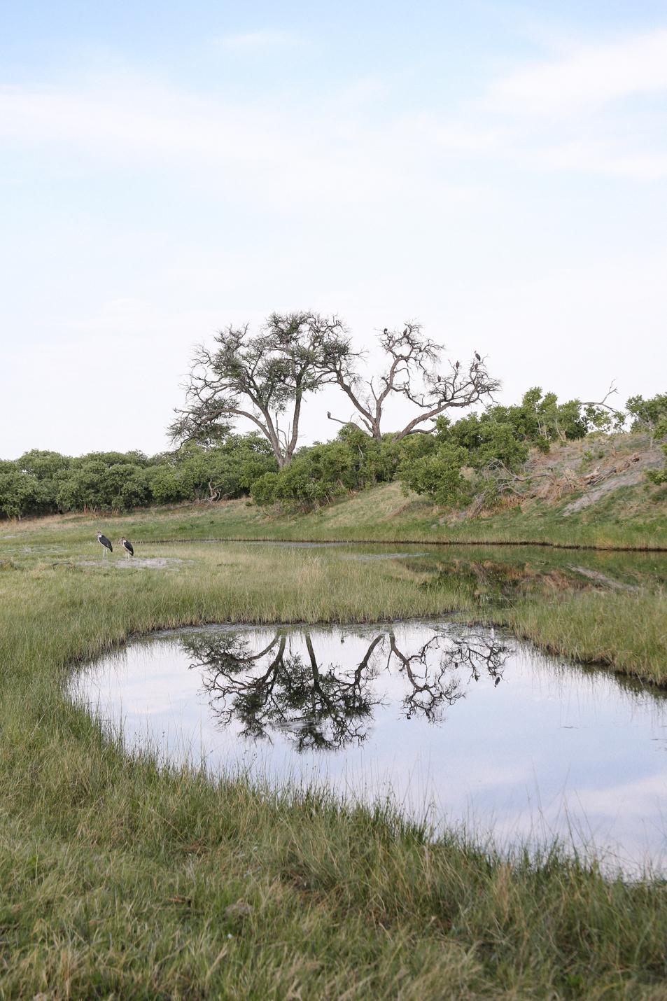 Africa - LindsayBrown -WEB-4827.jpg