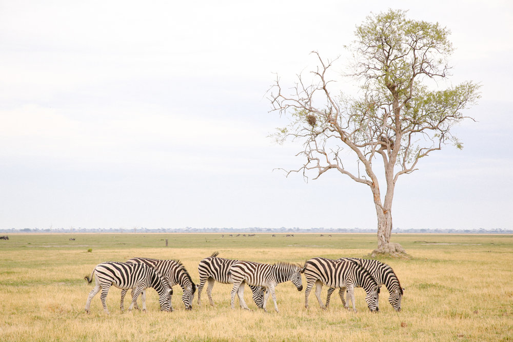Africa - LindsayBrown -WEB-4463.jpg