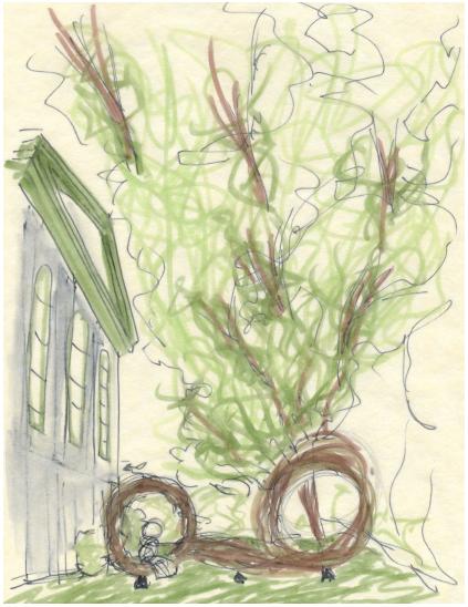 exterior garden & hub