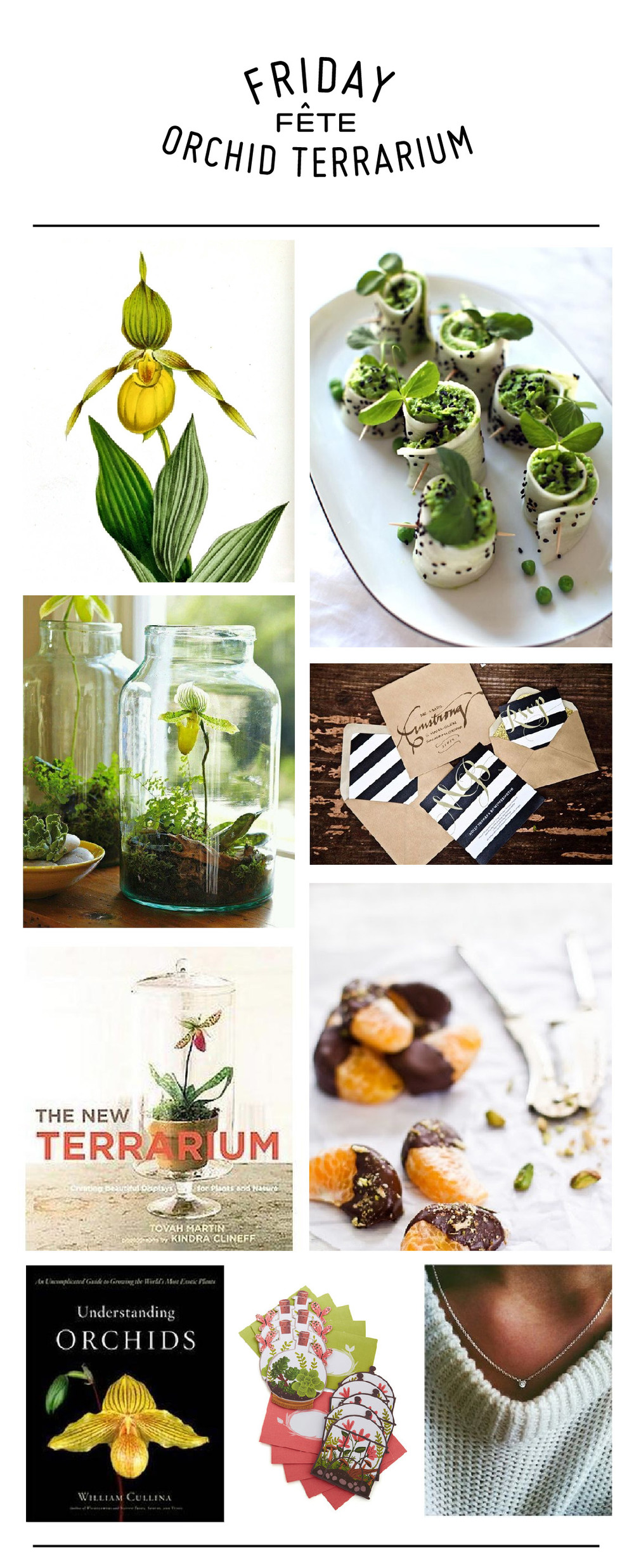 DIY terrarium and orchid party.jpg
