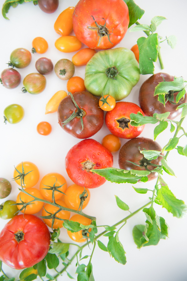 Summer Styled Shoot: Heirloom Tomatoes