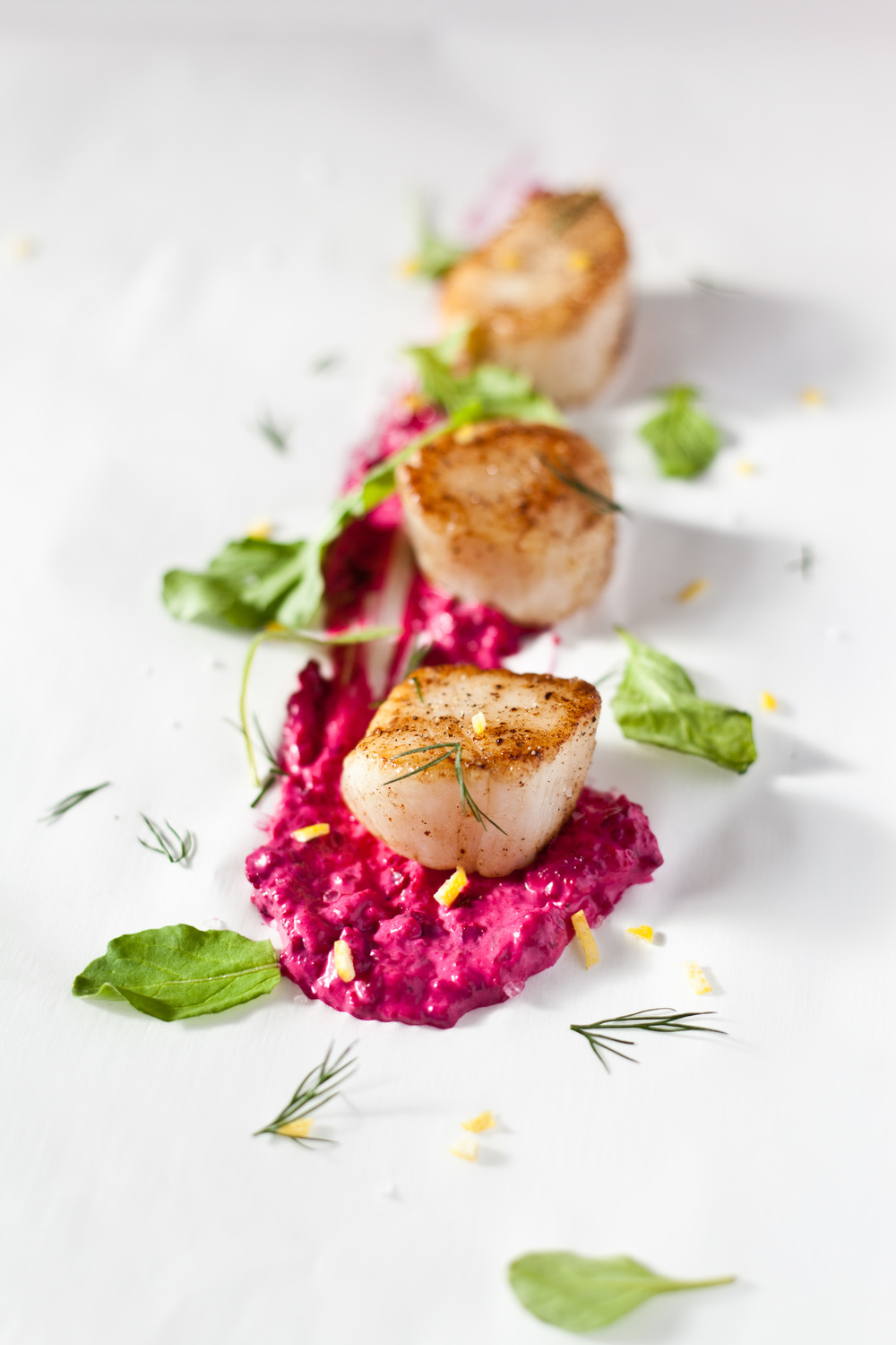 Sous Vide Scallops with Beet Mayo and Arugula: and the ANOVA Sousvide machine