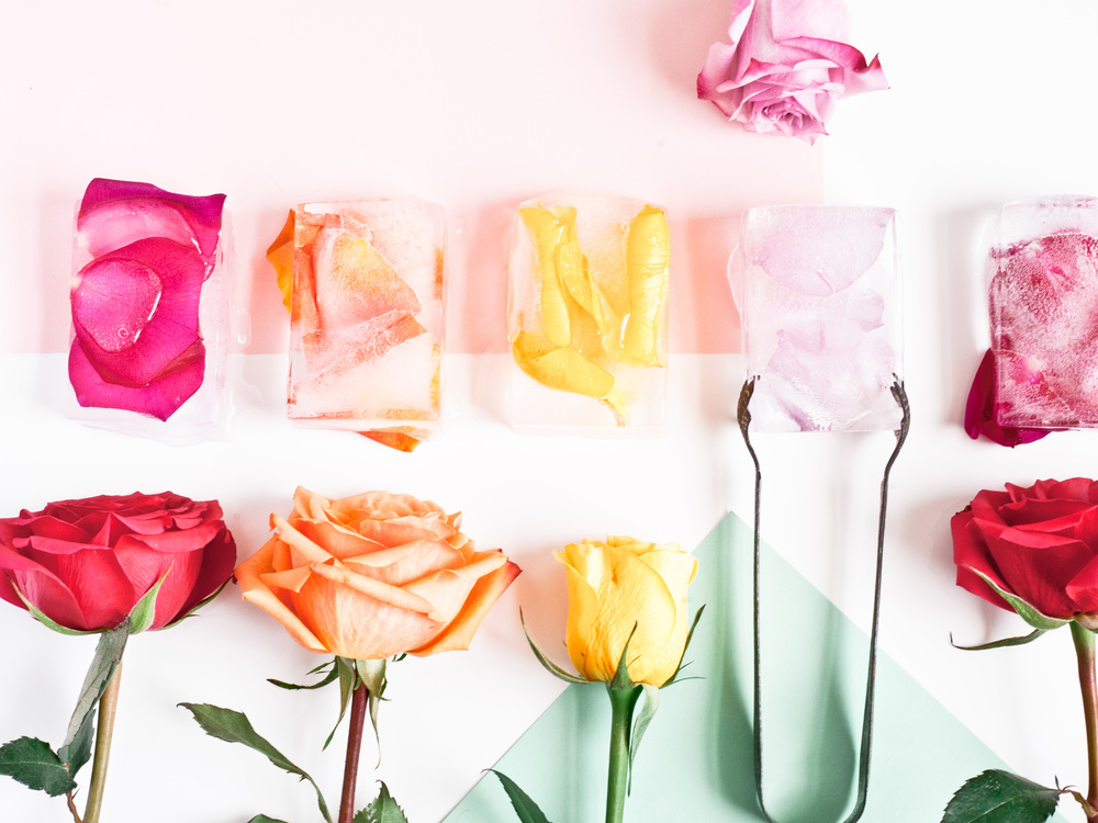 Food Network Feature: Creative Ice 'Cubes' petal ice cubes, flowers