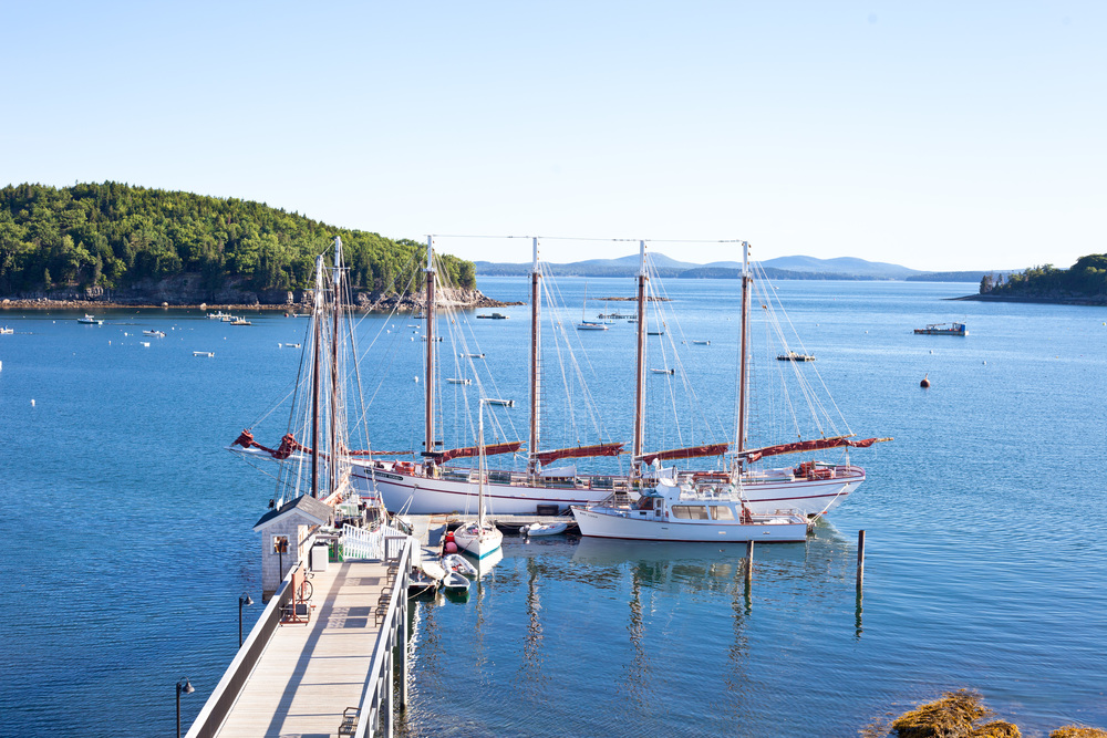 bar harbor maine must do's