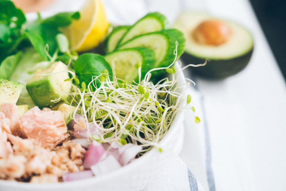 Tuna Avocado and Greens Bowl