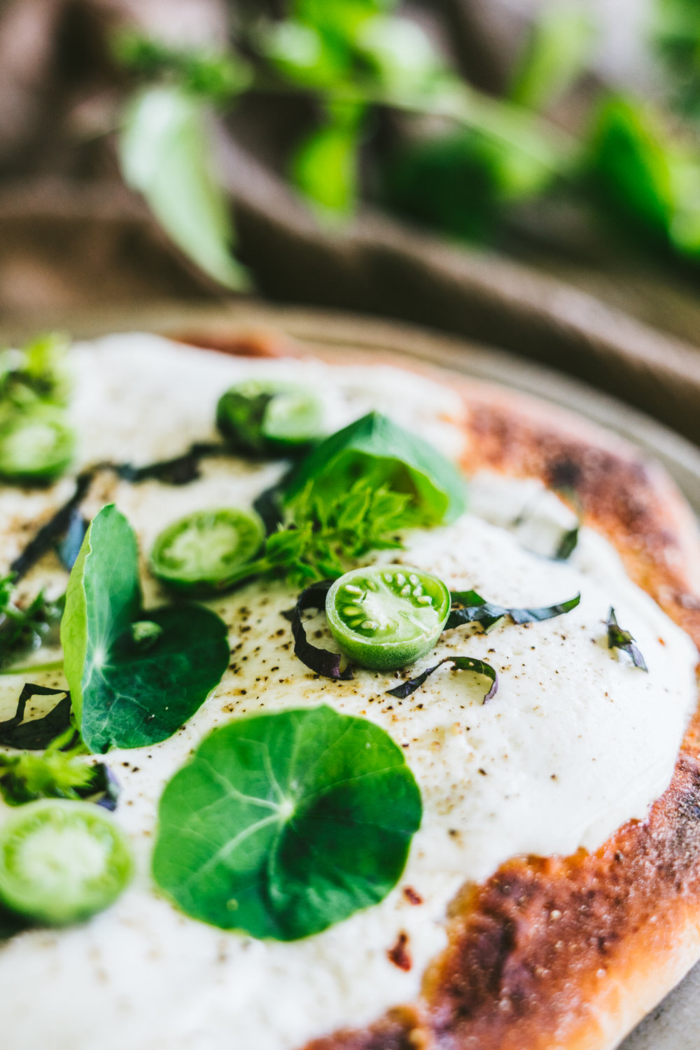 edible flowers, herb nasturtium white pizza