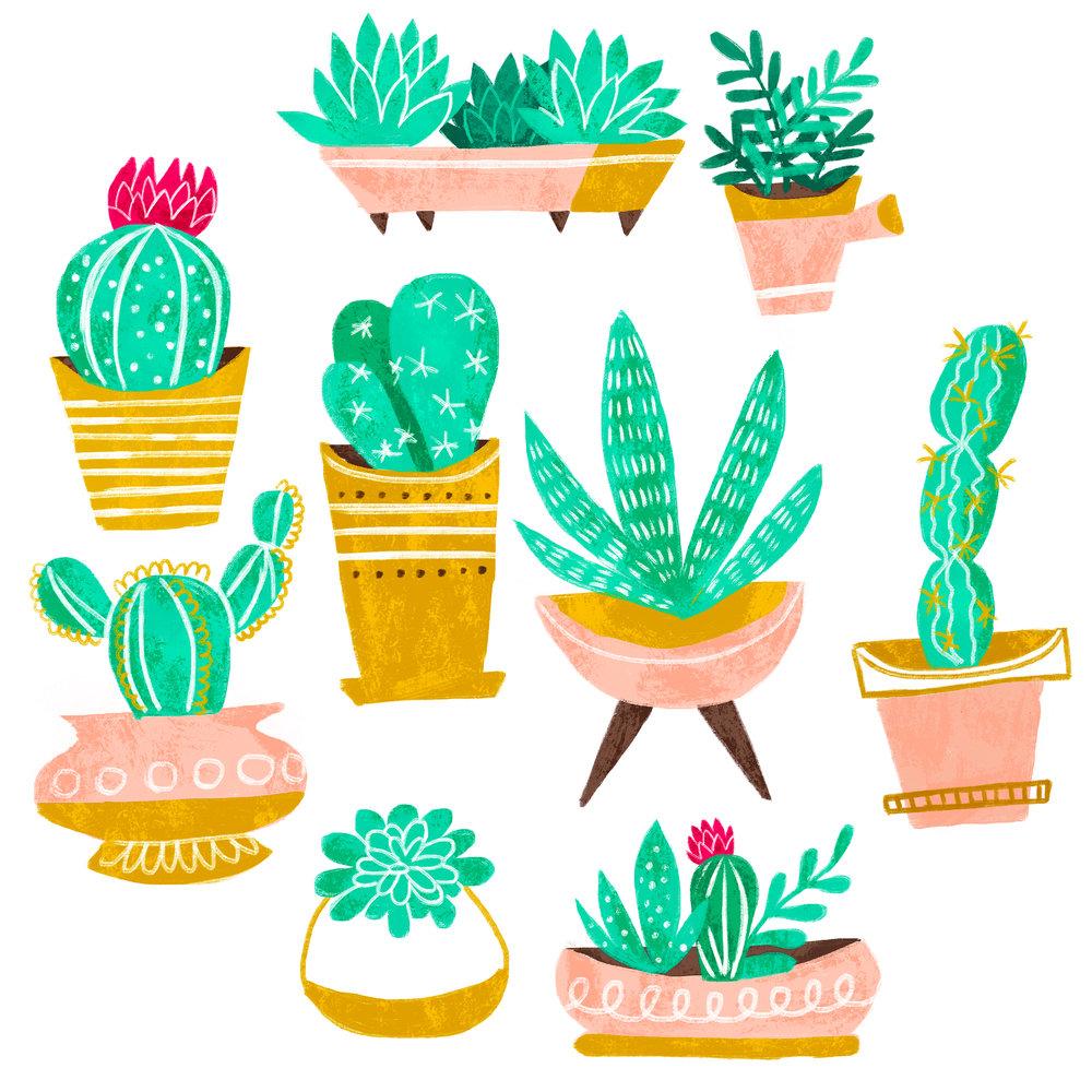 Cacti-Press.jpg