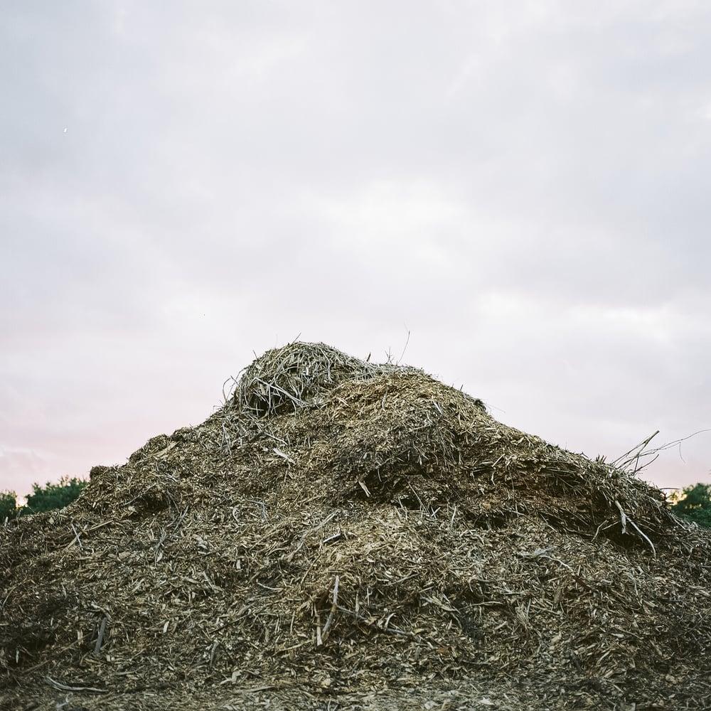 Mounds-10.jpg