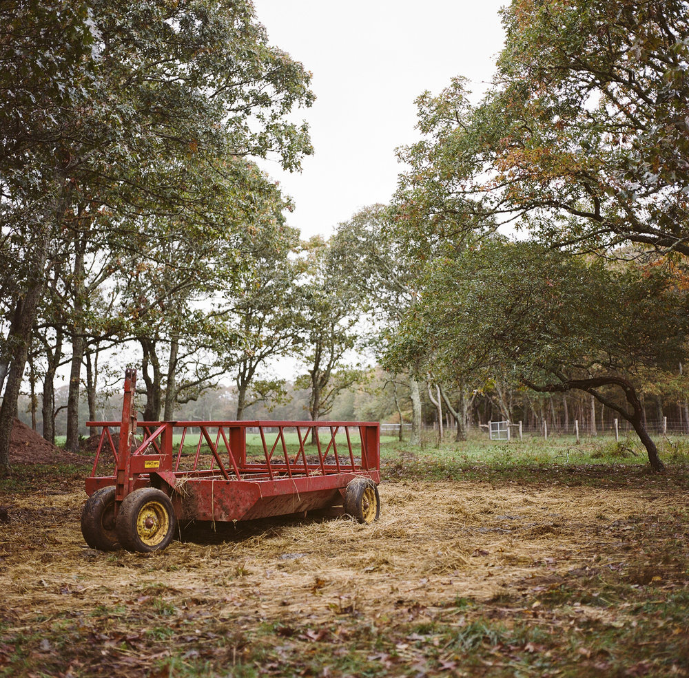 20121112ma_grey_barn_film-16.jpg