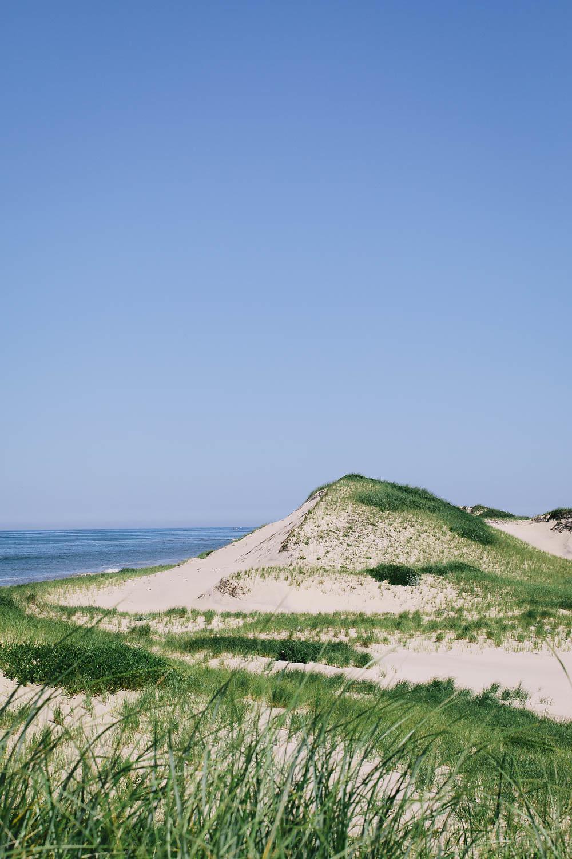 20170727ma_cape_beaches-121.jpg