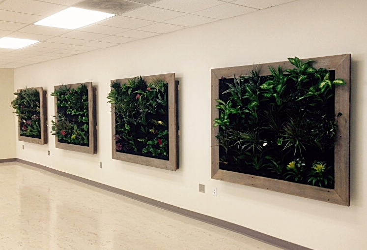 Indoor Vertical Planters.JPG