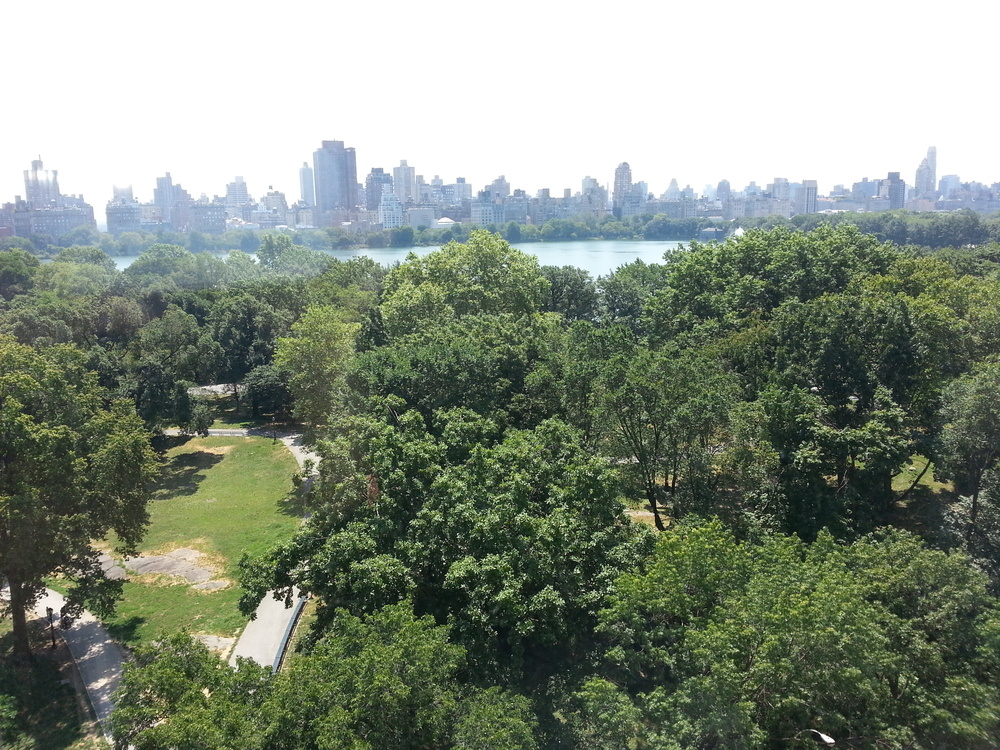 Central Park and Upper East Manhattan Skyline from our window.