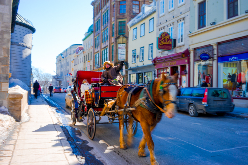 Horse carriage on the street of Quebec City
