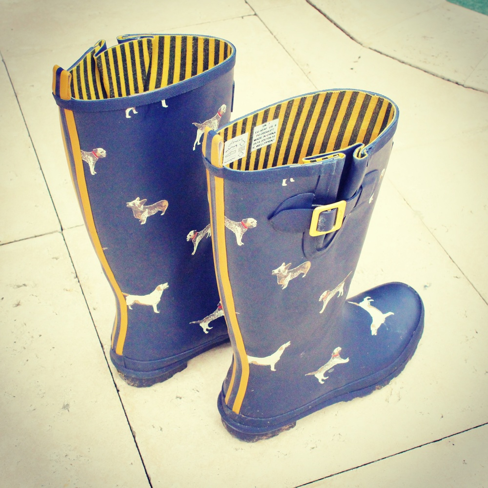 Joules navy dog wellies