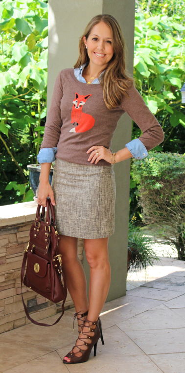 Animal sweater, chambray, tweed skirt