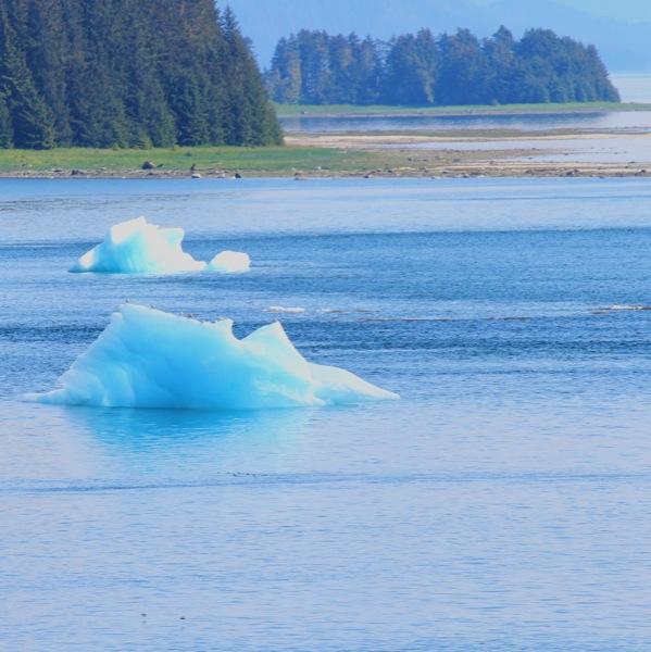 Iceberg, Alaska cruise