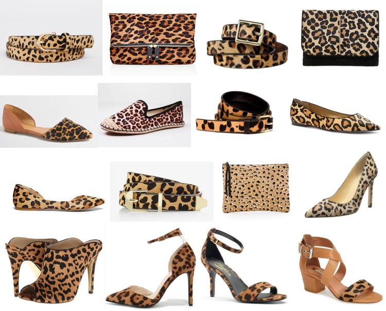 Leopard under $100