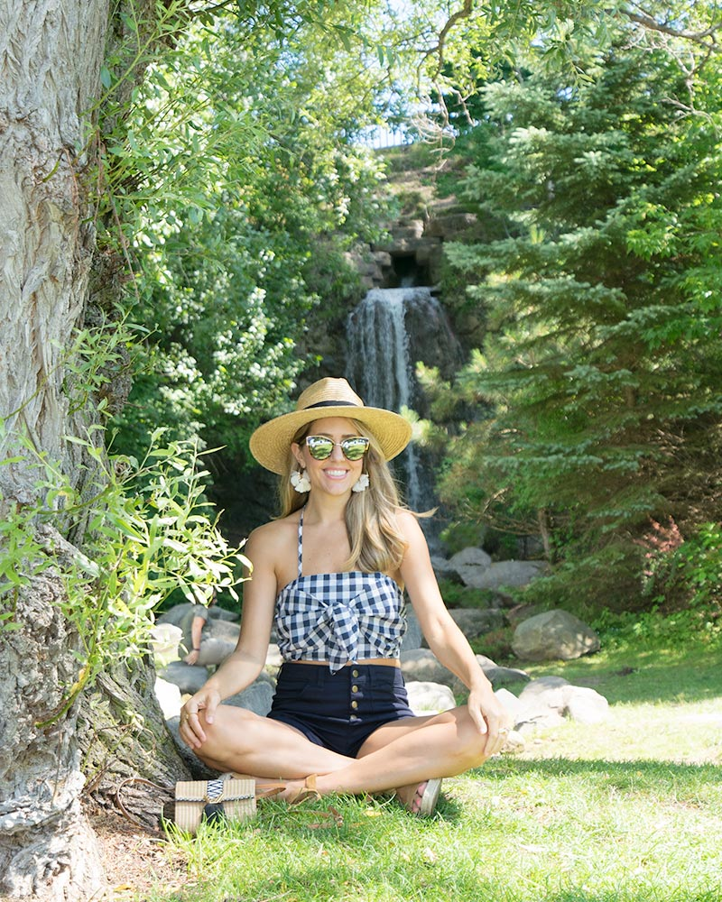 Petoskey waterfall - gingham crop top