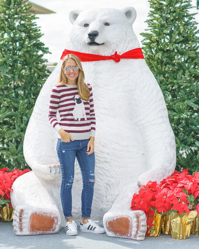 Striped pug sweater, Adidas Superstars