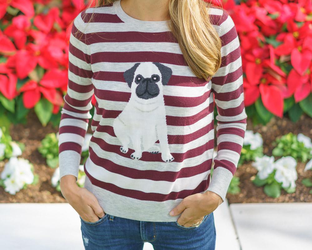 Striped pug sweater