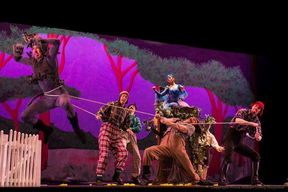 The Hunters attempt to carry off the Wolf in the  Peter and the Wolf  performance by the Manassas Ballet Theatre.
