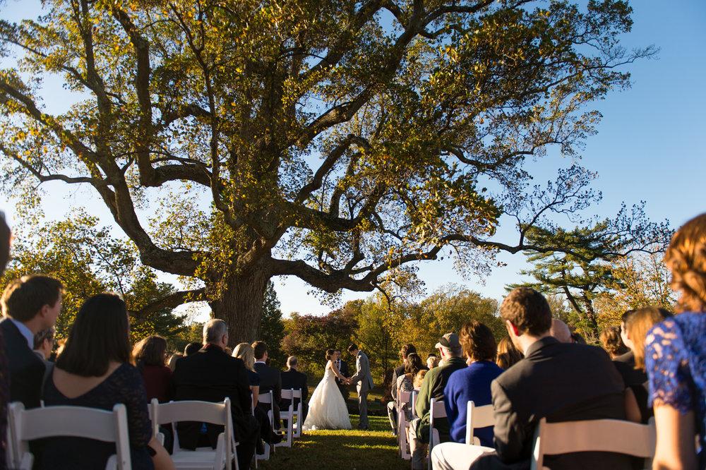 Maymont Richmond Wedding Rob Jinks 18.jpg