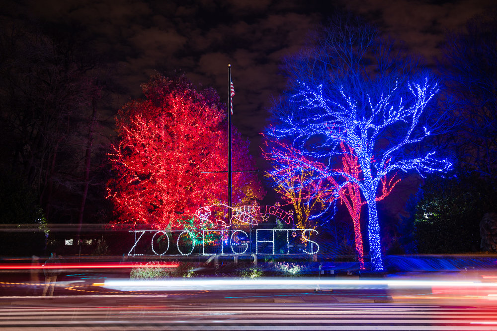 National Zoo Brew Lights