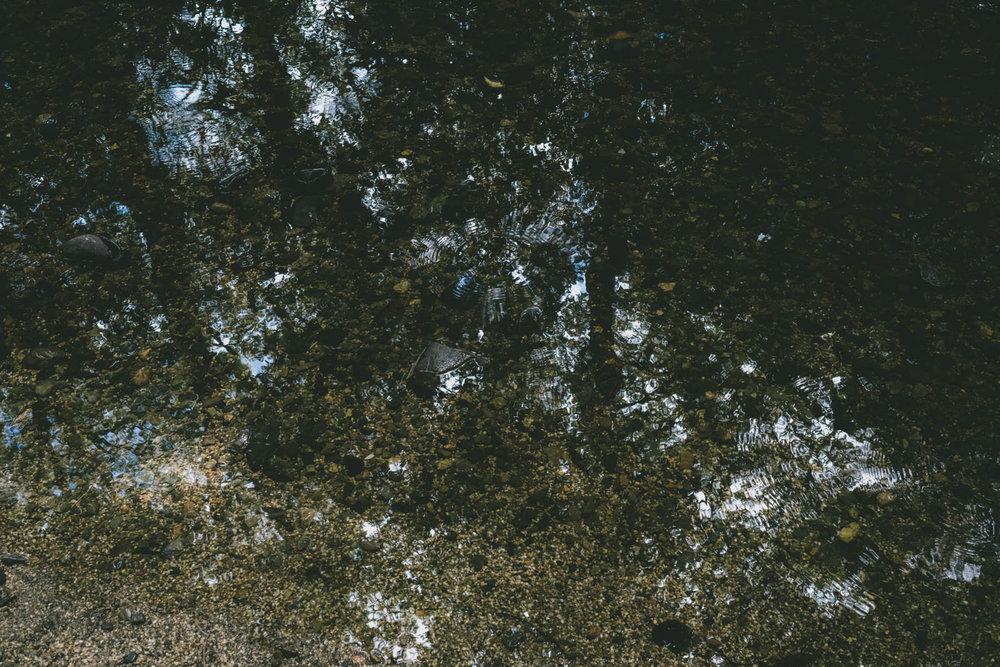 A stream in Kyoto © Ryo Shimao Ishii 2018