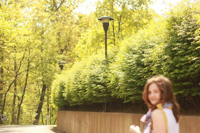 11 blurry alie and trees.jpg