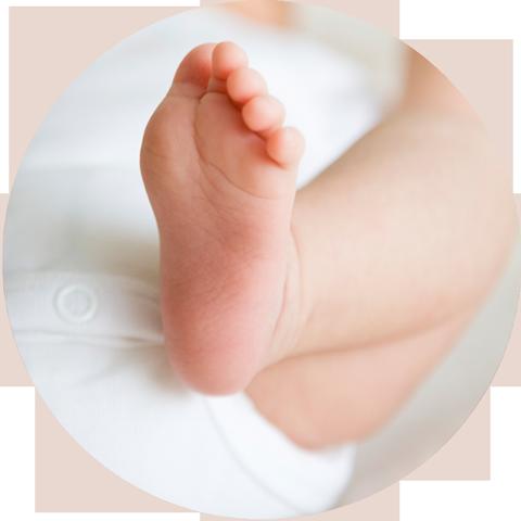 Postnatal.png