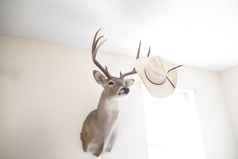 USA. Texas. Marfa. August 2013. The Kibbe boys' Clayton and Wyatt's room. A taxidermied deer being used as a hat holder.