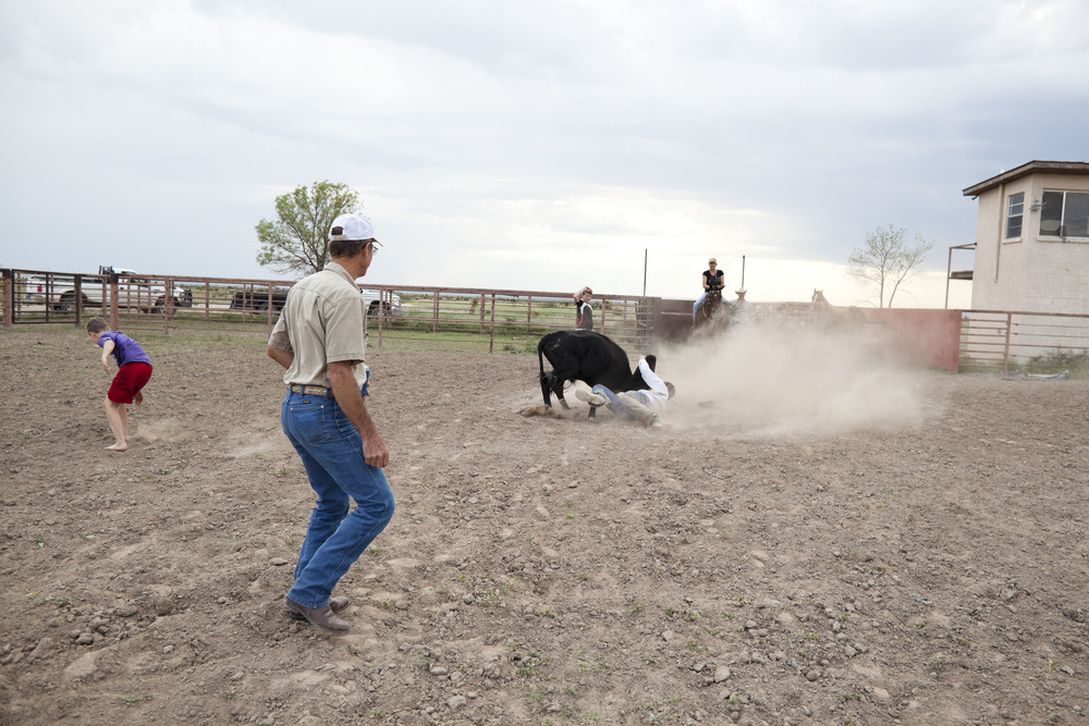 USA. Texas. Marfa. August 2013. Walker Kibbe surrounded by his family and their friend Elbert while wrestling a steer.