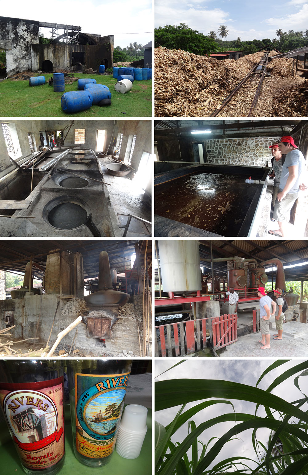 Rivers Rum distillery
