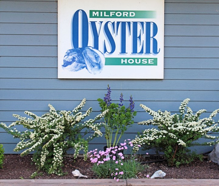 Milford Oyster House