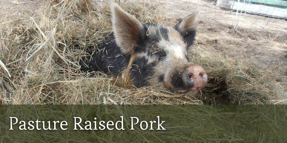 Pasture Raised Pork