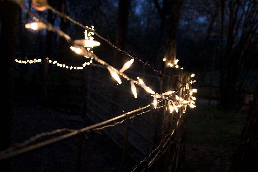 X-Mas Lights in March.jpg