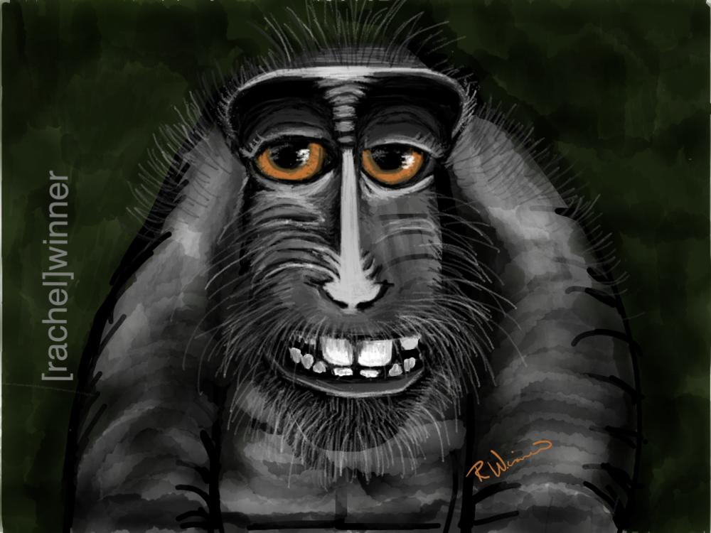 rachel_winner_creative_illustrations8.PNG