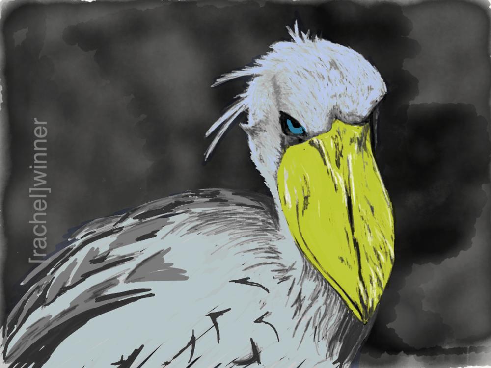 rachel_winner_creative_illustrations10.PNG