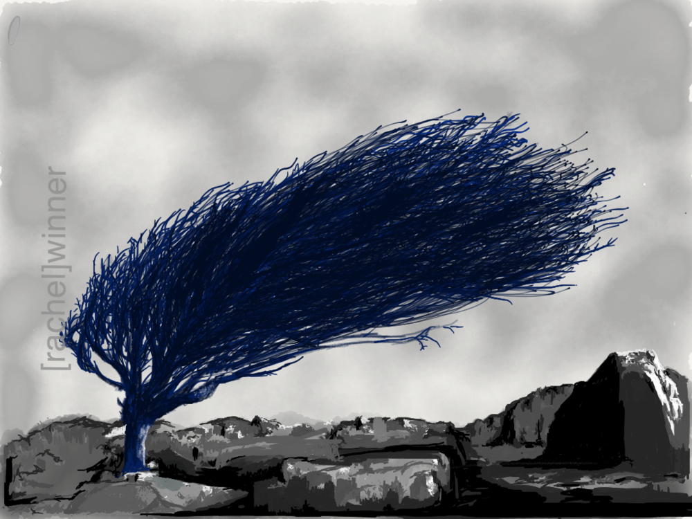 rachel_winner_creative_illustrations24.PNG