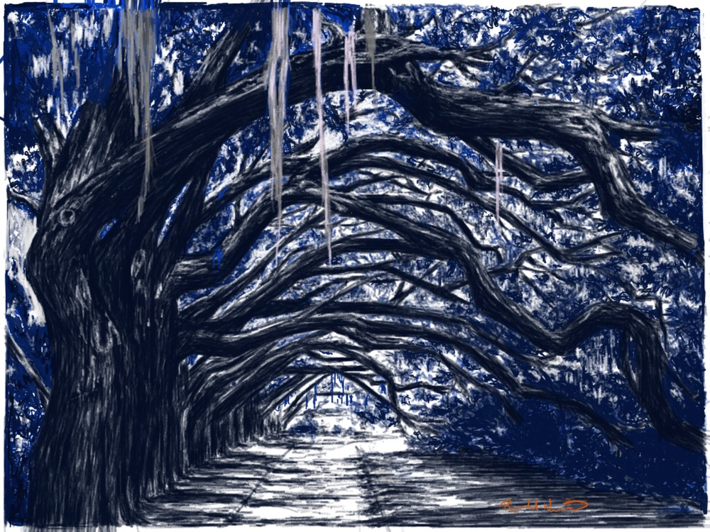 tree tunnel illustration by rachel winner