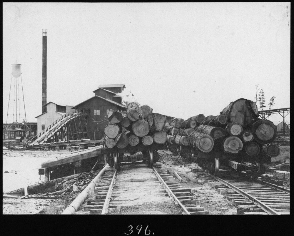 S. P. 396 Hardwood Log Trains and Hardwood Mill
