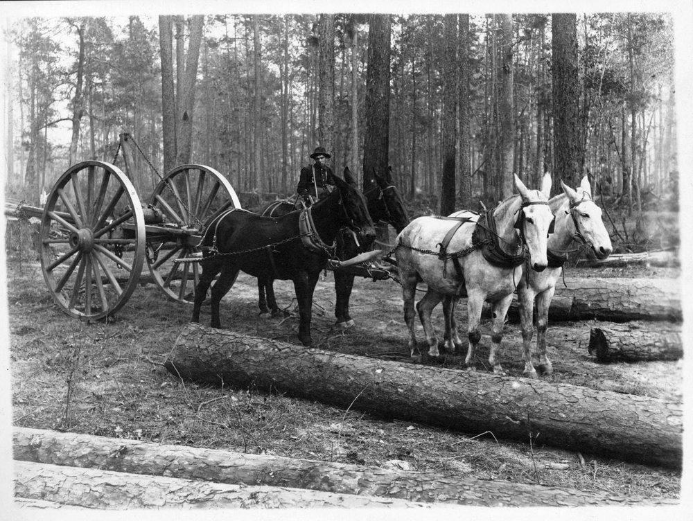 Tex107-Y High wheeled log cart skidder