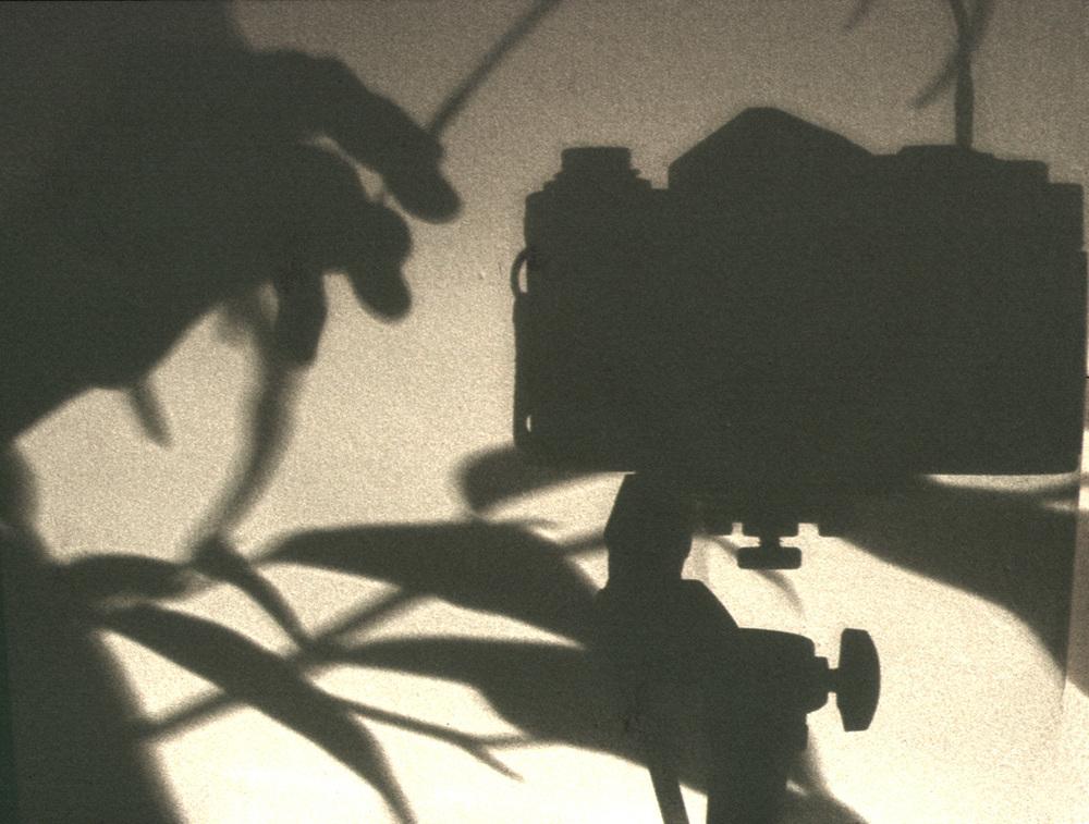 Shadows 1