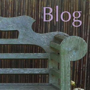 Bonhays Blog